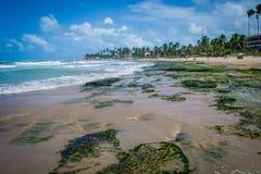 Playas del Brasil - Oporto de Galinhas Imagen de archivo
