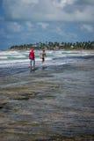 Playas del Brasil - Oporto de Galinhas Fotos de archivo libres de regalías