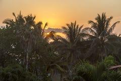 Playas del Este,古巴#13 免版税图库摄影