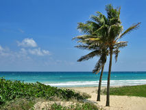 Playas del Este Royalty Free Stock Image