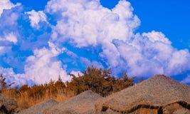Playas toscanas Fotografía de archivo libre de regalías