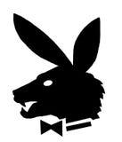 Playboy, een betekenis van humeur Stock Foto's