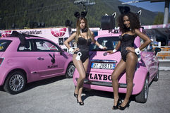 Playboy Girls at Giro d'Italia Stock Photography
