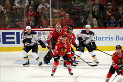 Player Action at Chicago Blackhawks Hockey Game. Players watch the action intently at a game between the Chicago Blackhawks and the St. Louis Blues hockey teams royalty free stock images
