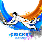 Player fielding in cricket championship Royalty Free Stock Image