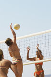 Player Jumping To Spike Volleyball Over Net Stock Photos