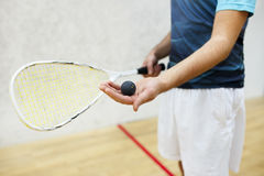 Player serving a squash ball Stock Image
