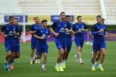 Players of Everton Stock Photos