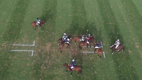 Players playing match on polo field