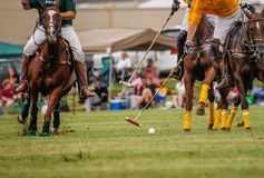 Players in a polo match. Trying to get control of ball shot from ground level stock photos