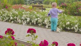 Playes del ragazzino con le rose vicino al cespuglio di rose 4K archivi video