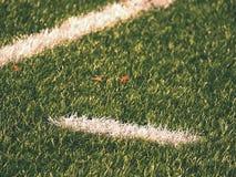 Playfield gräns Closeupsikt till vita linjer på fotbolllekplats Detalj av a av vita linjer Arkivfoto