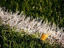 Playfield gräns Closeupsikt till vita linjer på fotbolllekplats Detalj av a av vita linjer Fotografering för Bildbyråer