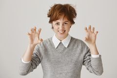 Playful adorable redhead with short messy hair and freckles saying roar while raising palms like it is paws, imitating a. Tiger or panther, standing over gray royalty free stock photos