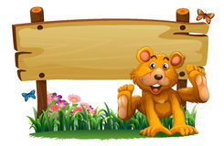 A playful bear near the empty wooden signboard Stock Image