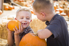 Playful Boys at the Pumpkin Patch Talking and Having Fun Stock Photo