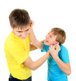 Playful Brothers Stock Photo