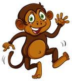 Playful brown monkey Stock Photos