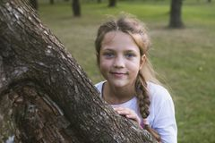 Hiding behind tree. Playful child girl hiding behind big tree trunk by summer Royalty Free Stock Images