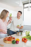 Playful couple preparing food together Royalty Free Stock Photos