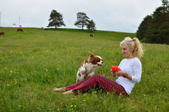 Playful Dog and Woman in Mountain Meadow Stock Images