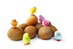 Happy Easter Chicks Stock Photos