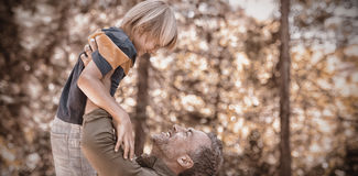 Playful father lifting up son in forest Royalty Free Stock Images