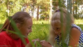 Playful girl friends lying on green meadow. Smiling girl playing with grass blade on summer field. Two girl teenagers stock video footage