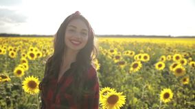 Playful girl relaxing in sunflower field stock video