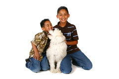 Playful Kids. Happy Kids With Their Playful Dog on White Background Royalty Free Stock Photos