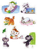 Playful kittens. Funny card vith cartoon kittens in Stock Photography