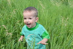 Playful little boy in the grass Stock Images