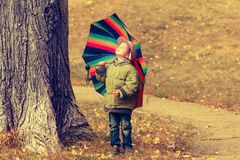 Playful little child hiding behind colorful umbrella Royalty Free Stock Photo