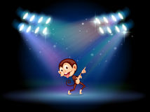 A playful monkey dancing in the middle of the stage Royalty Free Stock Image