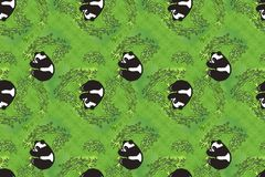 Playful Pandas Wallpaper Stock Photo