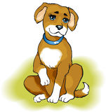 Playful puppy. Vector drawing. Playful puppy beige color on the green grass royalty free illustration