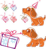 Playful puppy with gifts Stock Photo