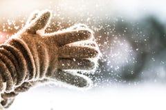 Playful Winter Stock Image