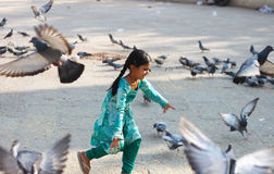 Playful young child with pigeons Stock Photography