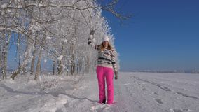 Playful Young Woman On Sunny Day In Winter, Pulls Tree Branch And Falling Snow. Playful young woman in pink pants and a warm sweater and pink pants in the woods stock footage