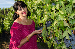 Playfull brunette in the vineyard Stock Photos