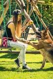Playfull hund på sommar i trädgård med ägaren royaltyfri fotografi