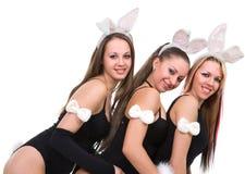 playgirls Στοκ εικόνες με δικαίωμα ελεύθερης χρήσης