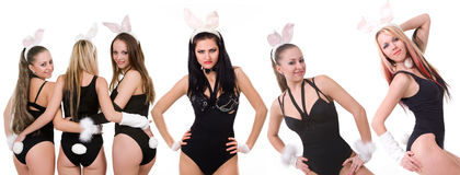 Playgirls atractivos Imagen de archivo