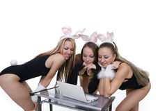 Playgirls with bunny ears looking at laptop Royalty Free Stock Photography