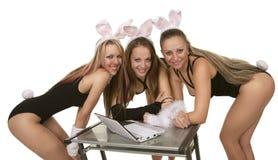 Playgirls del coniglietto con il computer portatile immagine stock