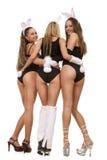 Playgirls sexy in costume del coniglietto fotografie stock libere da diritti