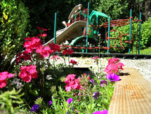 Playground & Flowers. Pretty flowers with playground in background stock photos