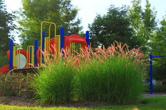 Playground Landscaping Royalty Free Stock Photo