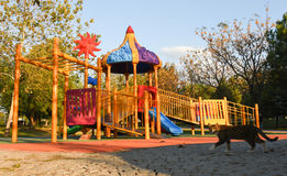 Playground in public park. Colorful playground for children. Royalty Free Stock Images